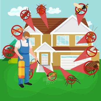 Pest Contol 77386