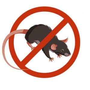 rodent exclusion services
