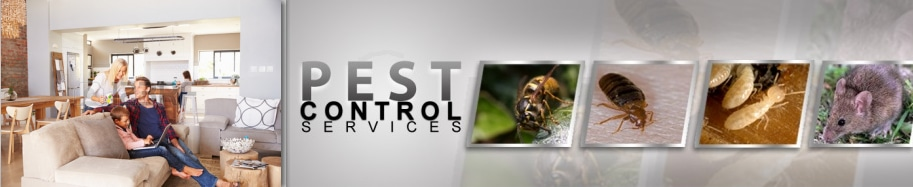 77379 Pest Control